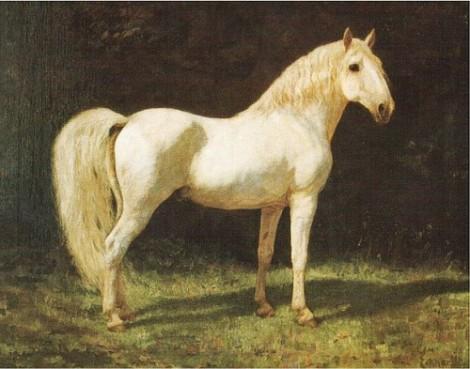 sognare cavallo, il cavallo nei sogni, cavallo bianco