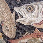 Sognare un pesce, i pesci