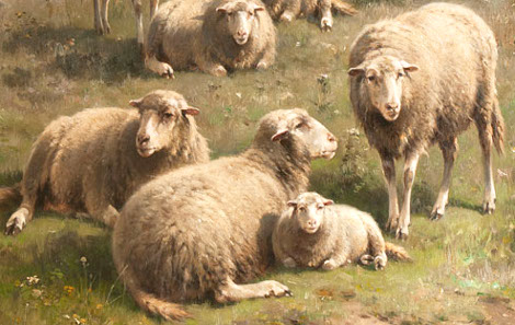 sognare pecore, agnelli