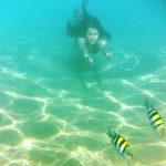 Sognare di nuotare in acqua tra le onde del mare e i pesci