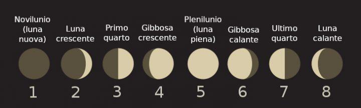 Rappresentazione delle fasi lunari: luna crescente, calante, novilunio, plenilunio, ecc